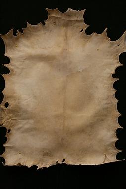 naturbelassenes Ziegenfell für Ihre Djembe oder Rahmentrommel, Artikelnummer: fell01