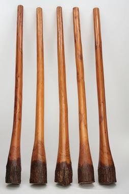 Set Angebot - Didgeridoo Jackfruit mit Rinde 1,5m + Lern CDs Didgman 1 + 2 + Tasche - SCHNÄPPCHENPREIS! Angebot der Woche, Artikelnummer: set03